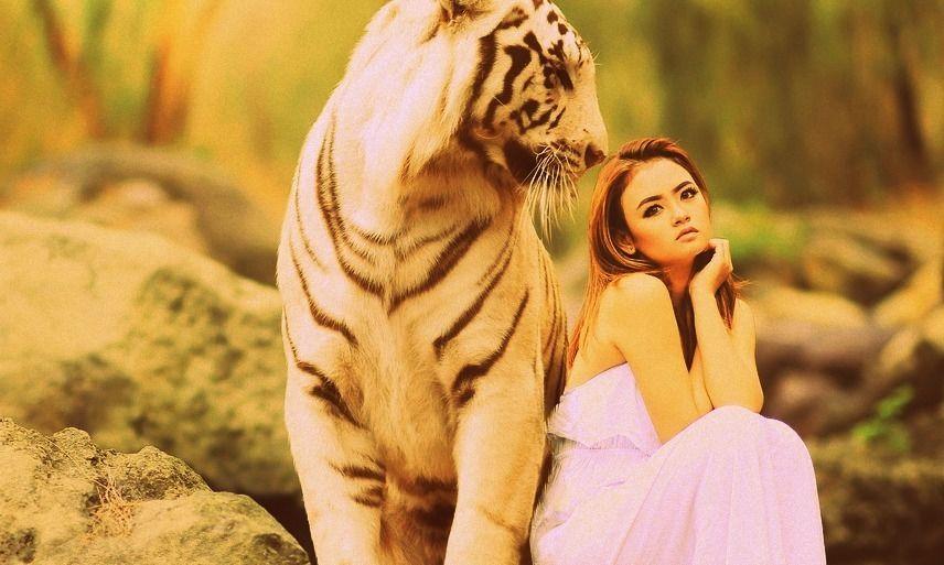 Dívka a tygr