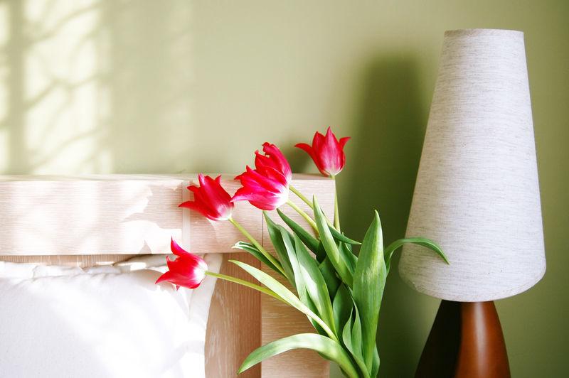 Tulipány v ložnici