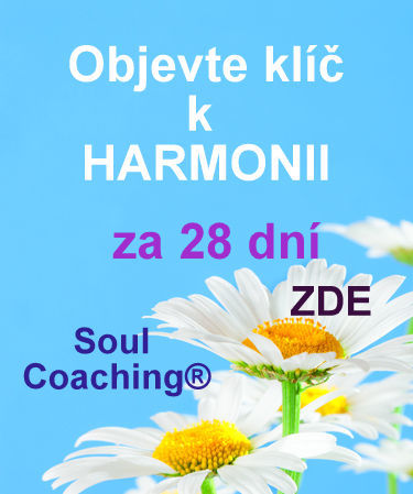 Soul Coaching za 28 dní